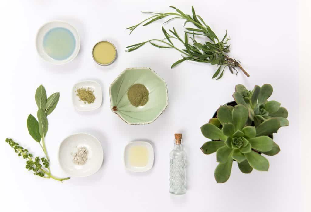 skincare natural ingredients